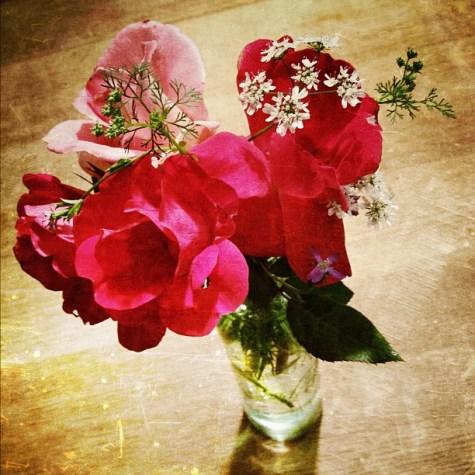 From my back yard... #flowers #pretty