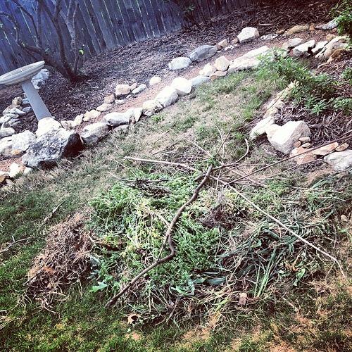 Weed Pile #smartyard #spon
