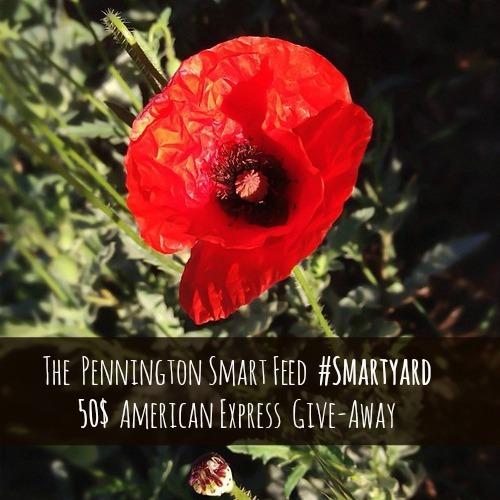 penningtongiveaway