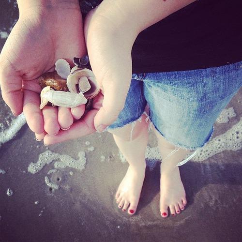 Momo's She-shells #galveston #igtexas #thsc