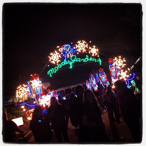 Moody Gardens Mile Long Trail of Lights!  #mgmediatour13