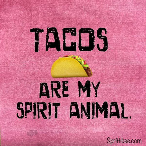 Tacos are my spirit animal. ~ @Sprittibee