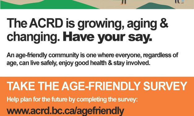 Age-Friendly Community Workshop
