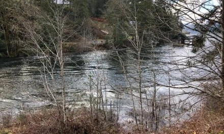 Sproat River Sweep