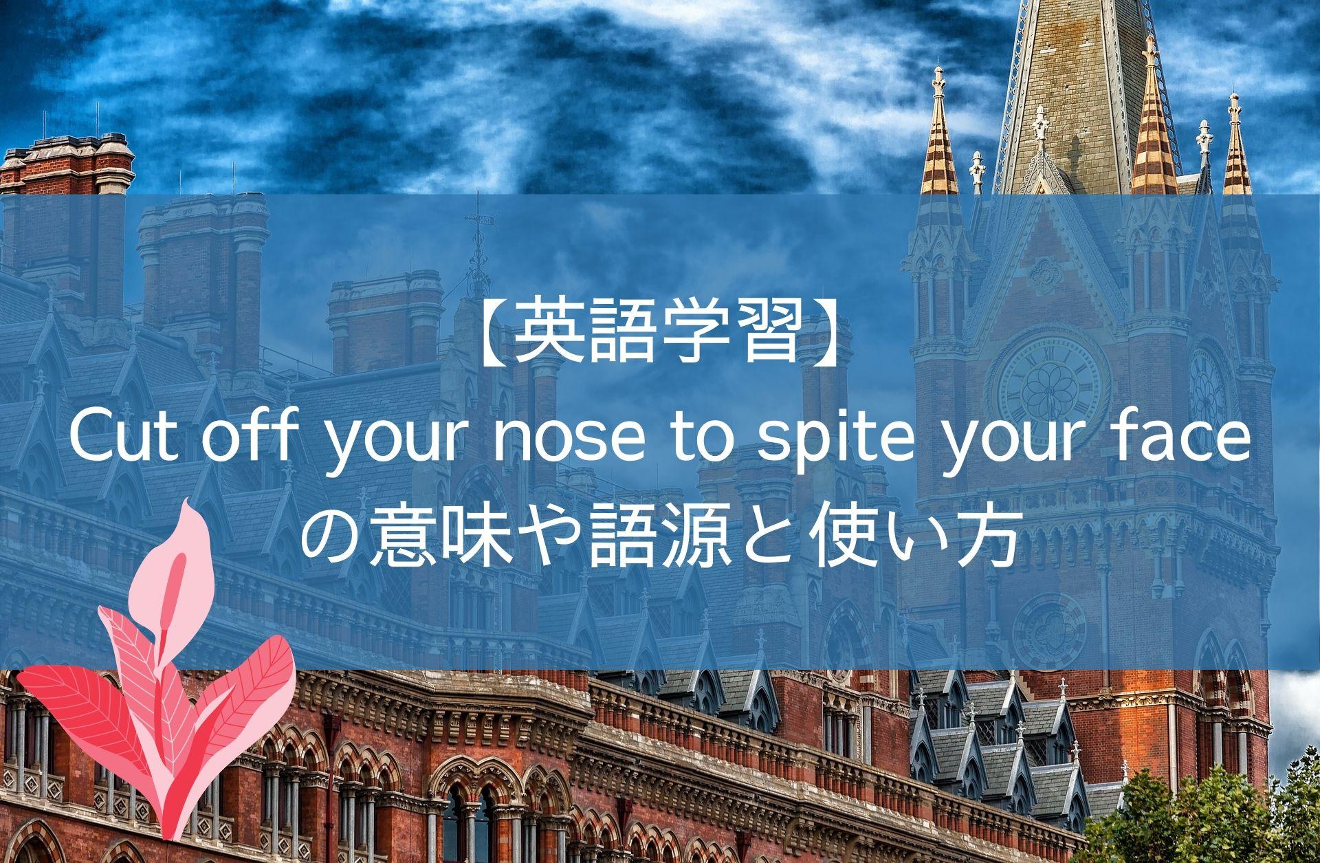 【英語学習】Cut off your nose to spite your faceの意味と使い方
