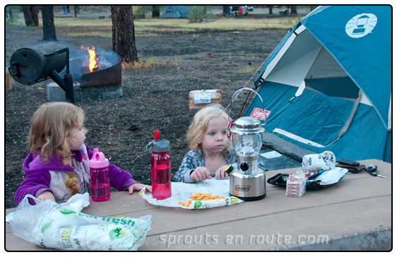 Family C&ing Cheaper Better and More Fun & PeaPod Tent Recall - Sprouts En Route