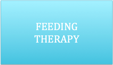 Feeding Therapy services