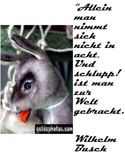 Esel - lustiger Spruch zur Geburt W. Busch