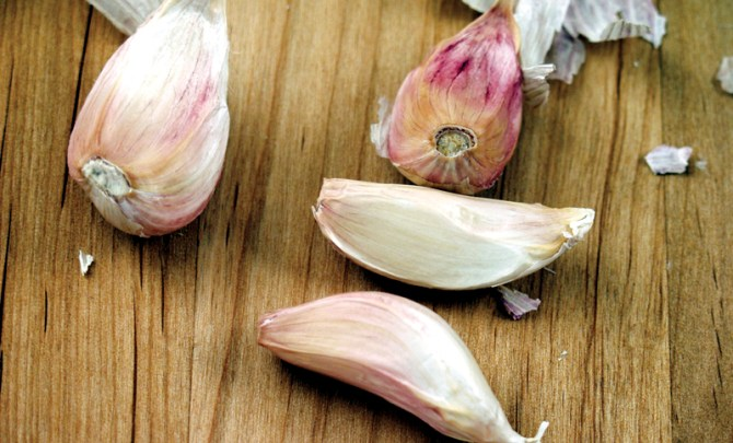 allium-food-vegetable-benefit-onion-shallot-scallion-garlic-food-diet-nutrition-health-spry