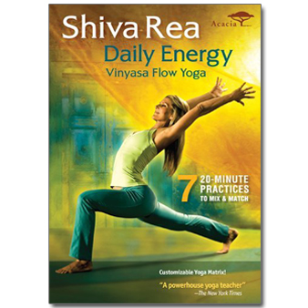 best yoga dvds  spry living