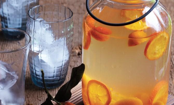 kumquat-tangerine-meyer-lemonade-inspired-vegan-diet-health-food-snack-treat-spry