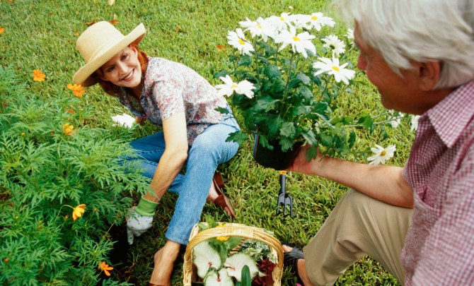 An-Allergy-Free-Garden-Spry.jpg