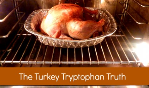 spry-turkey-truth-475x280