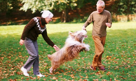 Couple-Walk-Exercise-Dog-Heart-Health-Spry-475x285