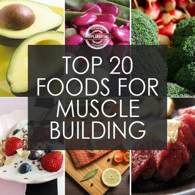 The Best Food for Muscle Building | spryliving.com