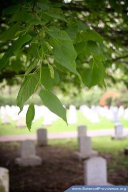 SP Convent Cemetery 1