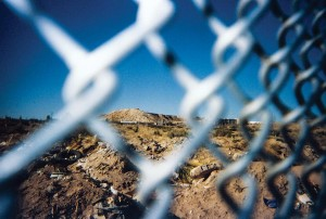 misconception-fence-web