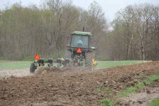 The Sisters of Providence lease their 300 acres of state-certified organic cropland to a local organic farmer who does the planting and harvesting.