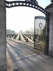 cemetery-sunlight-web