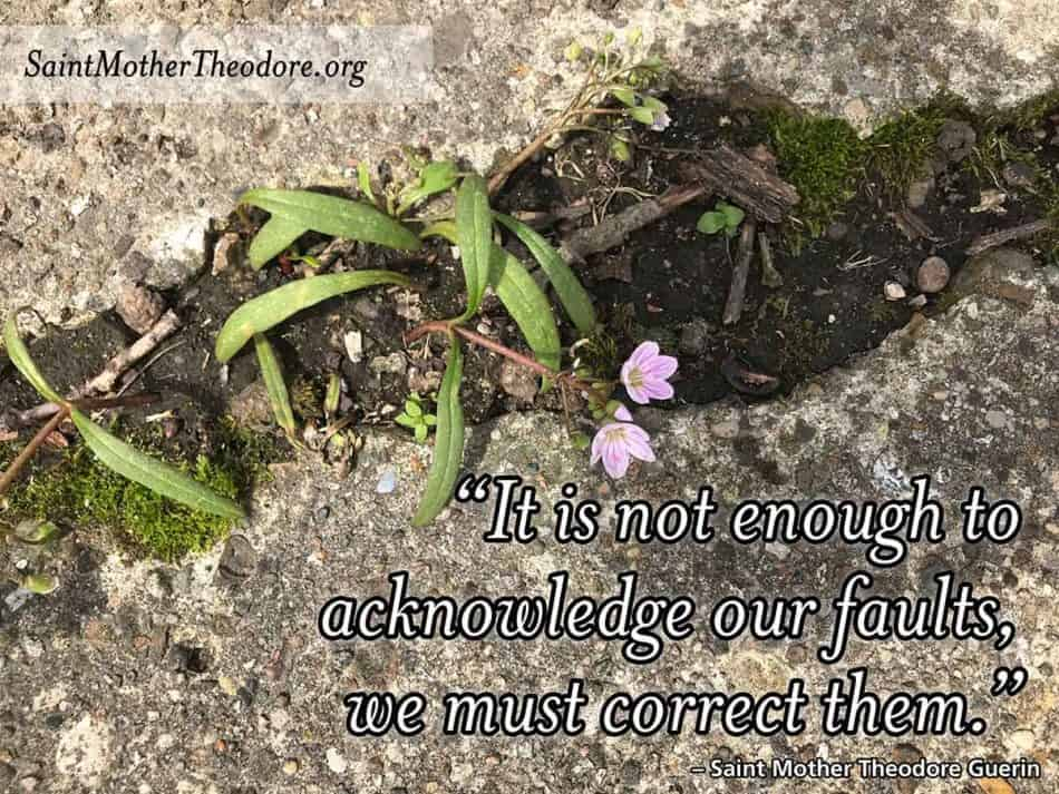 """image of crack in concrete with flower growing that says """"It is not enough to acknowledge our faults; we must correct them."""" - Saint Mother Theodore Guerin"""