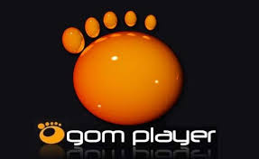 GOM Player 2.3.29.5288 Crack