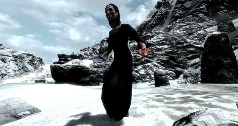 This is a generic Skyrim vampire.