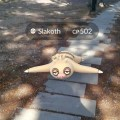 A Slakoth in the wild on Community Day