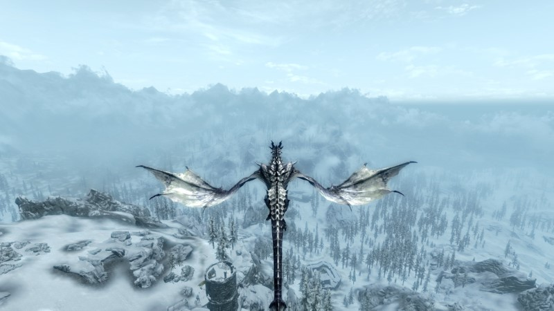 Skyrim with DynDOLOD and a dragon