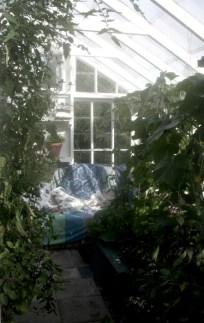 Växthusets myshörna. september14