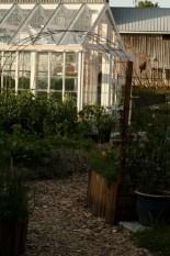Grönsakslandet och växthuset.