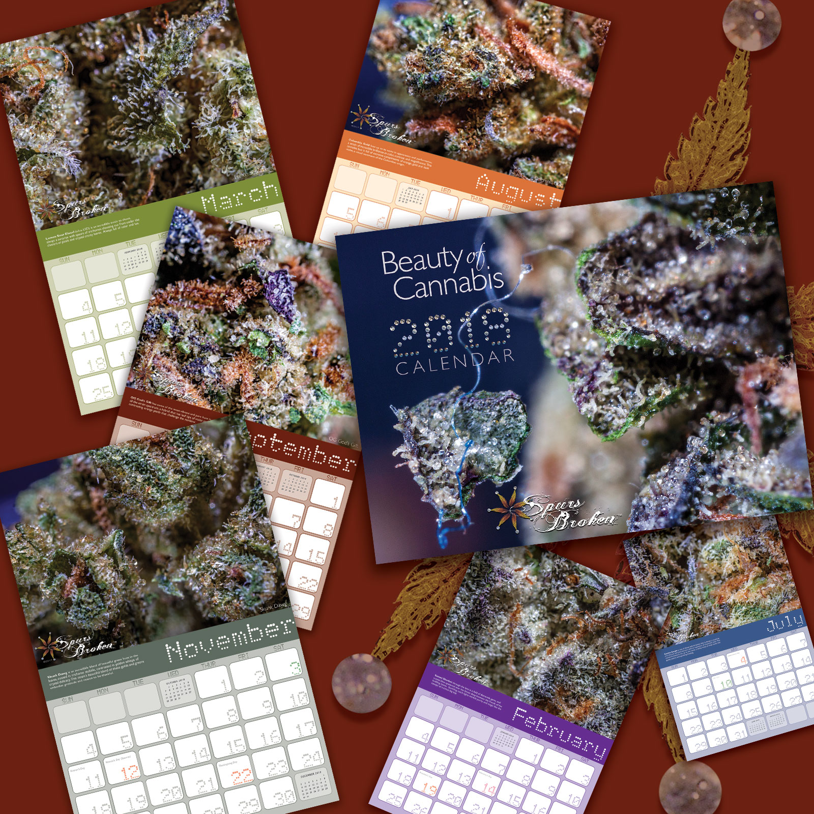 More Page views from inside the calendar