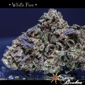 White Fire - Cannabis Macro Photography by Spurs Broken (Robert R. Sanders)