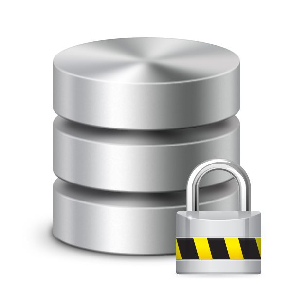 Database Security Needs