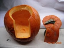 pumpkin back cut