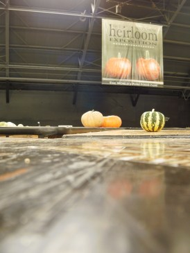 poetry in the last squash