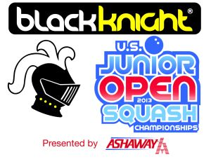 Jr.-OpenBlackKnight