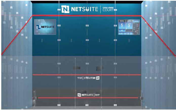 NetSuite Challenge Court