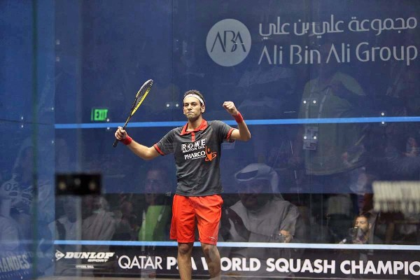 The moment of triumph for Mohamed Elshorbagy as he beats 2013 champion Nick Matthew