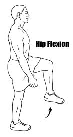 Hip Flexion