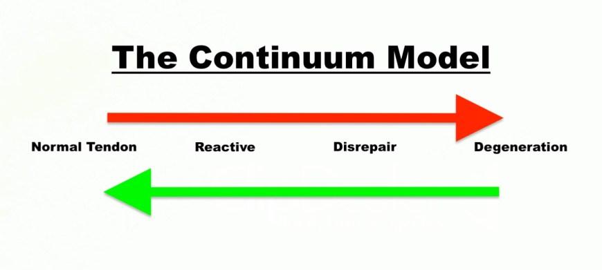 Tendon Continuum