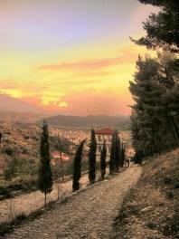 Landscape (14)