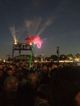 The ACL Flower at night