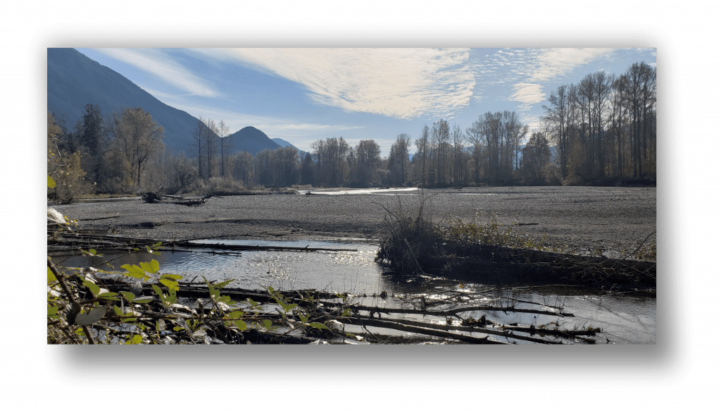 River out near Snohomish Wa.