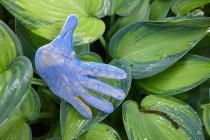 gimmie a hand