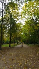 quiet park