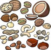 Image result for CLIPART NUTS