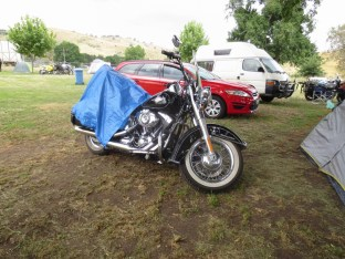 Harley Road King, Bethanga 2017.