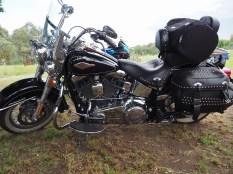 Harley Road King, Bethanga 2017.
