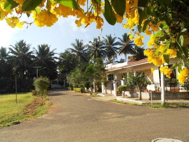 Serene Shenbagam Estate