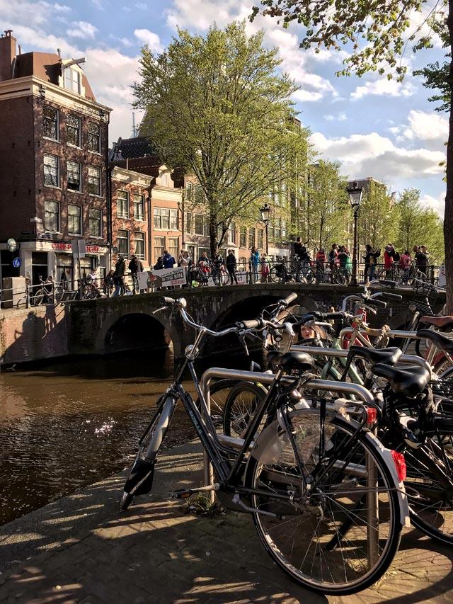 Le biciclette sono il simbolo di Amsterdam: le trovi ovunque accanto ai canali e ai ponti!